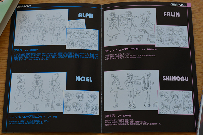 Mahou Shoujo Lyrical Nanoha vol.2
